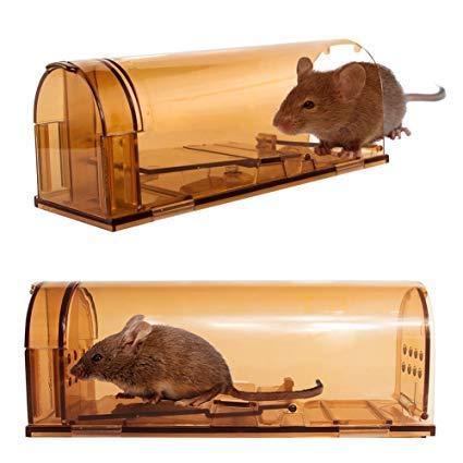 Signstek Confezione da 2 Trappola di topi umani in plastica con foro d'aria, dispositivo di trappola Smart Small Mouse riutilizzabile per topi, ratto o roditori (marrone)