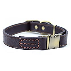 brown leather dog collars