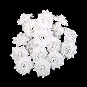 Tinksky Silk Rose Flower Heads for Mother's Day Hat Clothes Album Embellishment 50pcs (White)