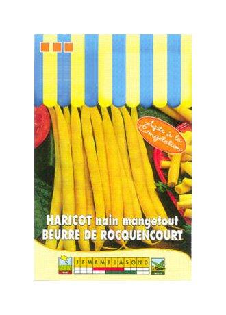 Les Graines Bocquet - Graines De Haricot Nain Beurre De Rocquencourt - 110G - Graines Potagères À Semer - Sachet De 110Grammes