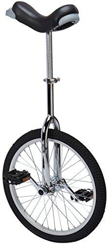 SWORDlimit 24 Inch Wheel Unicycle