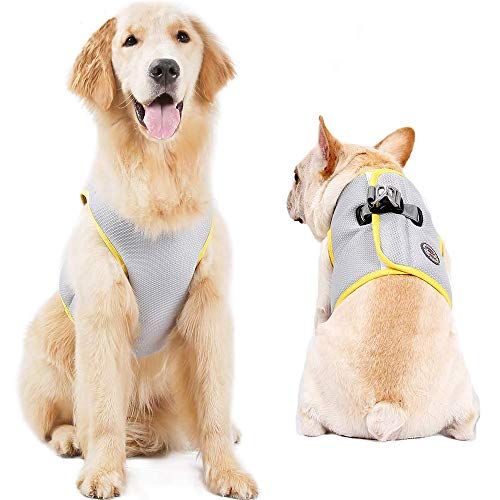 FOREYY Dog Cooling Harness