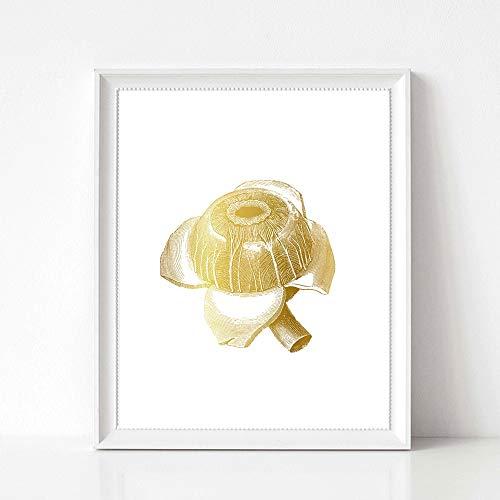 oioiu Sin Marco-Gold Human Eye Print Anatomy Post Medical Art Oftalmología Imagen de la Pared Impresión en...
