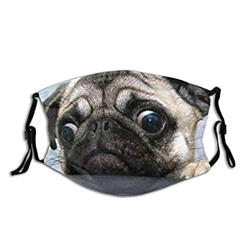 Funny Dog Humor Pug Face Mask With Filter Pocket Washable Reusable Face Bandanas Balaclava With 2 Pcs Filters