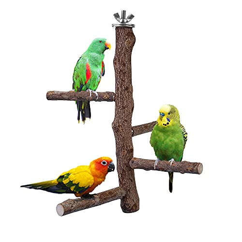 "Filhome Bird Perch Stand Toy, Natural Wood Parrot Perch Bird Cage Branch Perch Accessories for Parakeets Cockatiels Conures Macaws Finches Love Birds (M: 10"" Length)"