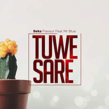 Tuwe Sare (feat. Mr Blue)
