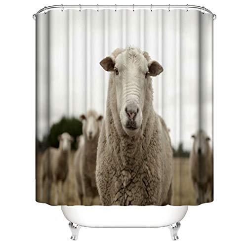 LGY Süße Schafe. Duschvorhang. Badezimmerzubehör. Wasserdicht. Enthält 12 Haken. Duschvorhangstangenringhaken. Hintergr&. Party. Wohnzimmer.