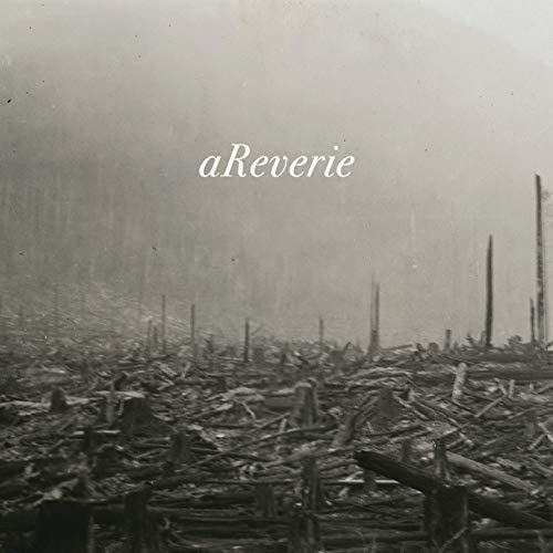 aReverie