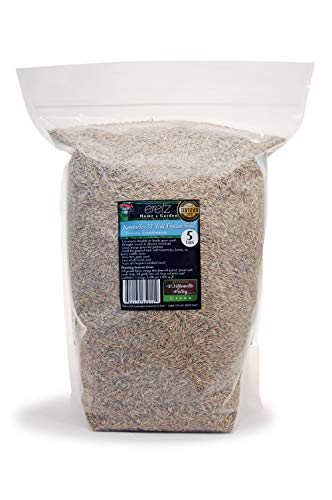 Kentucky 31 K31 Tall Fescue Grass Seed by Eretz - State Certified, No fillers, No Weed or Other Crop Seeds (5lbs)