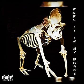 Feel it in my Bones FS