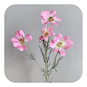 Onln 1pc Artificial Cosmos Silk 6 Gesang Flower Living Room Floor Display Fake Wedding Scene Decoration Photography Props-14-