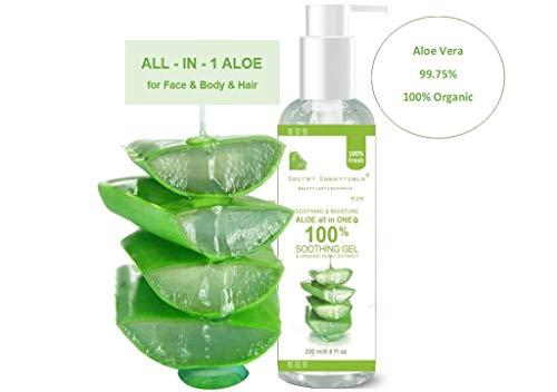 Aloe Vera Gel Vegan mit Kamille & Kollagen   KOSMETIKANALYSE: SEHR GUT   Feuchtigkeitscreme für Gesicht, Haare & Körper   Premium Qualität 200 ml   Aloe Secret...