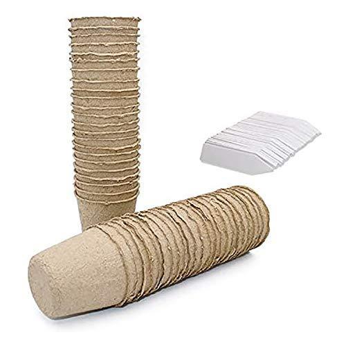 DXX-HR 100 Bandejas de trasplante Maceta Biodegradable con Macetas con 100 Etiquetas plásticas Blancas Jarrón Decorativo