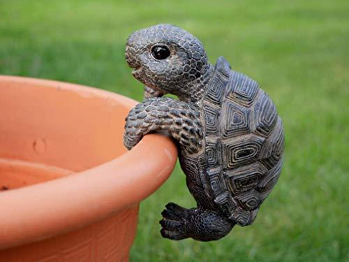 Homes on Trend - Portavaso decorativo da giardino, motivo: tartaruga, colore: marrone