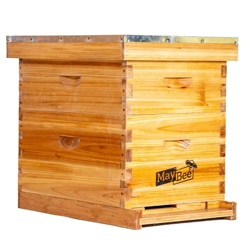 Beehive 8 Frame Bee Hives and Supplies Starter Kit, Bee Hive for Beginner, Honey Bee Hives Includes 1 Deep Bee Boxes, 1 Bee Hive Super with Beehive Frames and Foundation