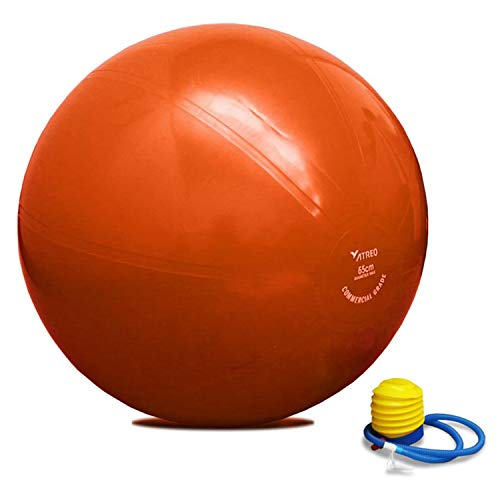 ATREQ Commercial Grade Gym Ball Each Perfect for weight training fit ball workouts yoga pilates or physiotherapy 65cm