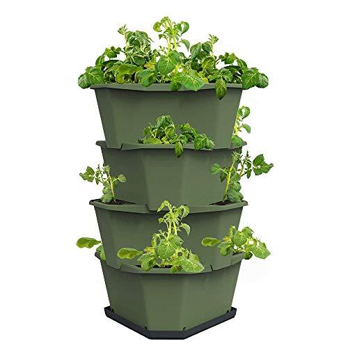 Paul Potato Starter Kartoffelturm - stapelbar - Hochbeet/Pflanzgefäß/Blumentopf für Balkon, Garten und Terrasse (4 Etagen, Dunkelgrün) inkl. Untersetzer