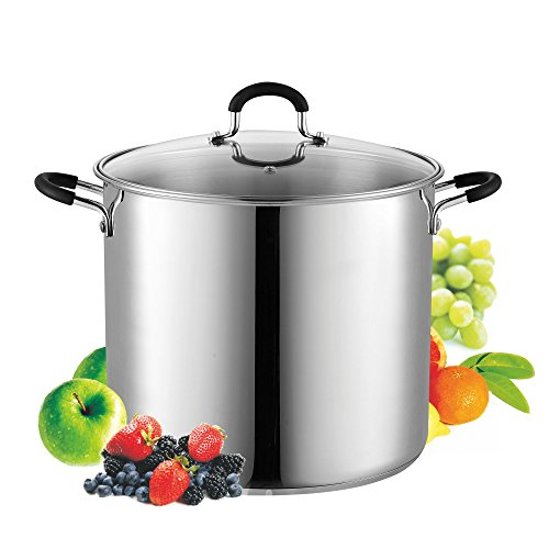 Cook N Home 12 Stainless Steel Saucepot with Lid Quart Stockpot, QT, Silver