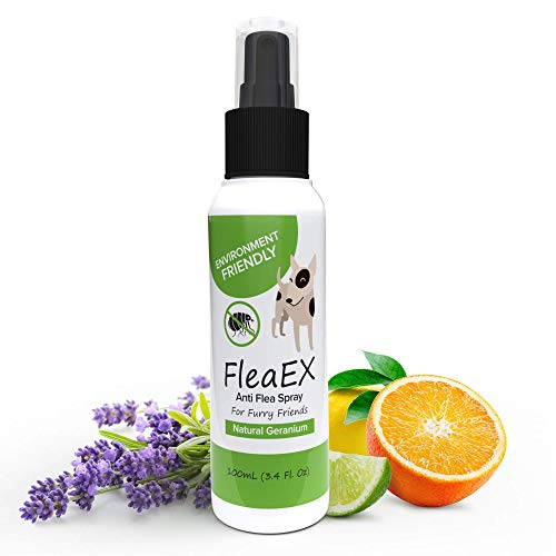 FleaEx Antiparassitario Cani Spray - Repellente Antipulci Cane Bio - Protezione Anti Pulci e Zecche Cani e Gatti - Spray Antipulci per Cani - Antiparassitario per Cani, con Olio di Geranio, 100 ml
