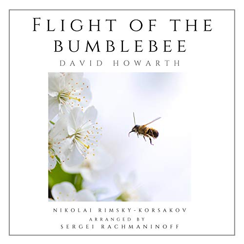 Flight of the Bumblebee (Solo Piano)