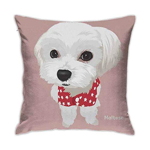 9 shbixmashdho Throw Pillow Covers,Cute Maltese Dog Puppy, Funny Animal Pillow Cases Throw for Couch Bed Sofa Soft Velvet Cushion Cover 18 x 18 Inch