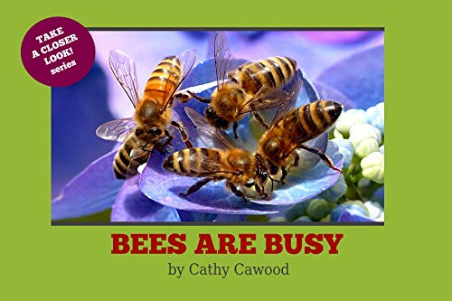 Bees Are Busy (Take a Closer Look Book 2) (English Edition)