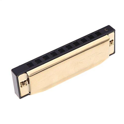 ammoon Swan diatonische Mundharmonika 10 Löcher Blues Harp Mundharmonika Schlüssel des C-Reed-Instrument mit RS Golden