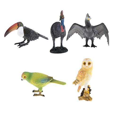 #N/A 5Pcs Wildlife Bird Tiermodell Figur Cognitive Toys Teaching Decor