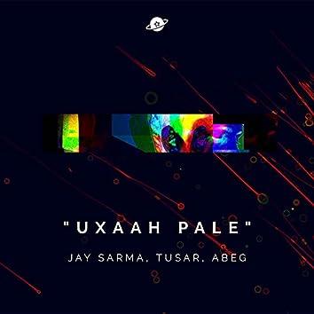 Uxaah Pale