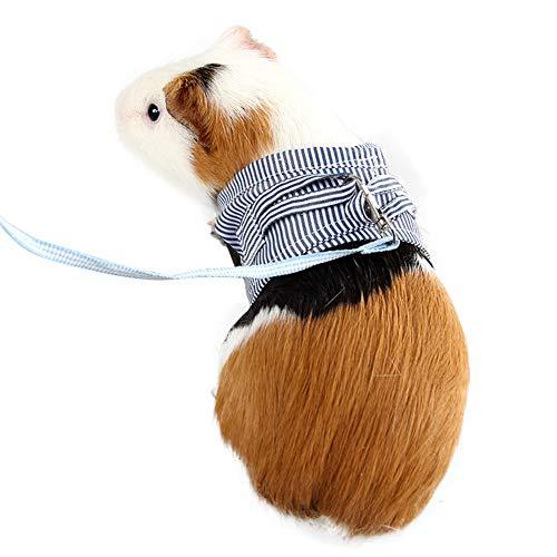 Adnikia Small Pet Animal Harness Vest & Leash Set, No Pull Harnesss for Squirrel Rabbit, Guinea Pig, Totoro, Chinchilla, Squirrel, Marten & Mink,...