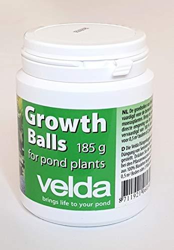 Velda -   122250