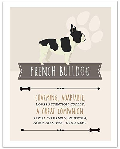 French Bulldog Dog Wall Art - 11x14 Unframed Decor Print - Makes a Great Gift Under $15 for Dog & Pet Animal Lovers