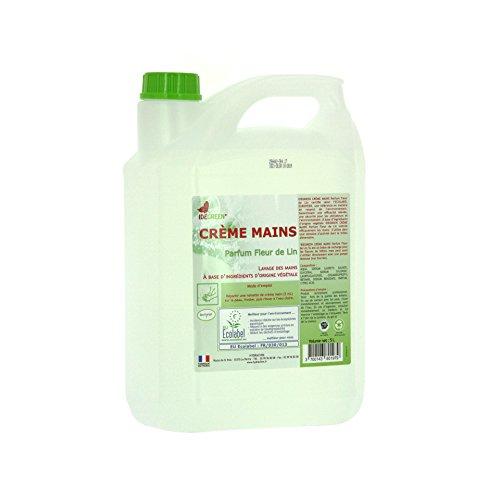 Delaisy Kargo 123765 Crème lavant mains Ecolabel IDEGREEN, 5 L