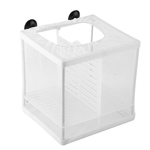 Fish Incubator Mesh Box Aquarium Brüterei Aquarium Isolation Box Fischzüchter Box Jungfisch Brüterei Inkubator mit Isolation Board