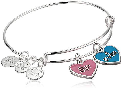 Alex and Ani Color Infusion Best Friends Duo Charm Bangle Bracelet Silver One Size