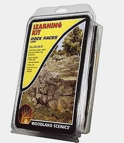 70% de descuento Woodland Scenics Scenics Scenics Rock Faces Learning Kit by Woodland Scenics  bienvenido a orden