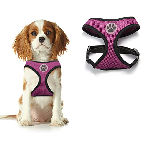 BINGPET Dog Harness - Pet Soft Mesh Walking Vest Puppy Padded Adjustable Harnesses for Kittens Small Dogs, Purple Extra Small