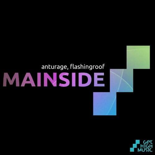Anturage & Flashingroof