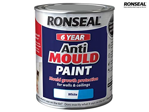 Ronseal AMPWS750 Anti Mould Pain...