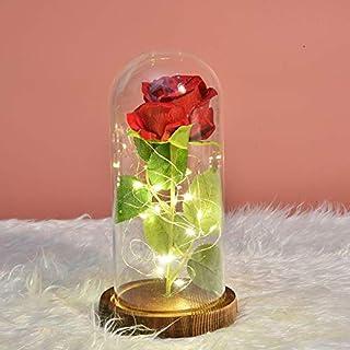 Kit de Rosas LED,Rosa Eterna Rosas Encantadas Luz LED Kit de Rosas La Bella y la Bestia en Cúpula de Cristal Romántica Rosa de Seda para San Valentín Aniversario Bodas