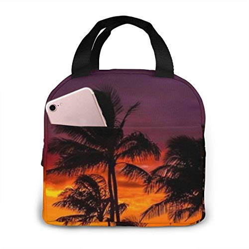 Newport Beach Sunset Novelty Book Cat Lunch Bag Tote Bag, Waterproof Insulated Bento Pouch Cooler Bag for Work School Picnic Travel Beach with Pocket