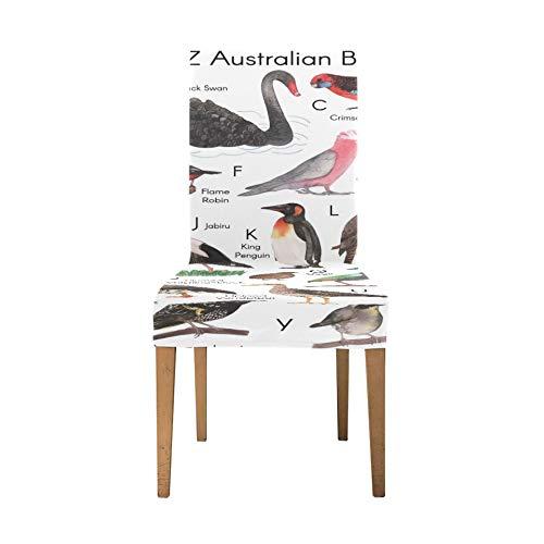 Stuhlbezüge für das Esszimmer A Z Australian Birds Art Print Sitz Esszimmerstuhlbezug Soft Stretch Stuhl Schonbezüge für das Esszimmer Waschbar Abnehmbare Esszimmerstuhl Sitzbezüge für Zuhause