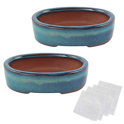 Happy Bonsai 6.7' Small Glazed Pots Value Set 2 + 4 Soft Mesh Drainage Screens