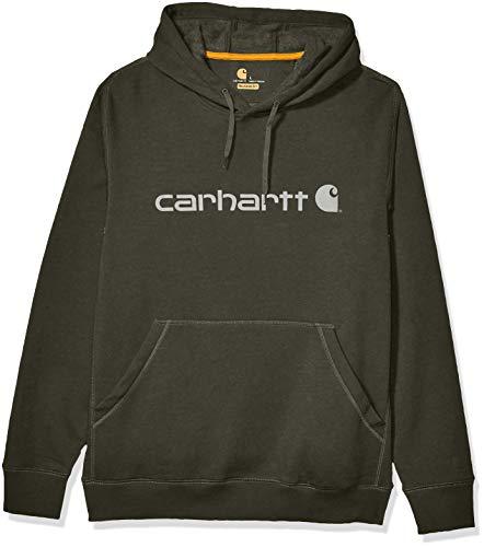 Carhartt Men's Force Delmont Signature Graphic Hooded Sweatshirt, Moss Heather, Large