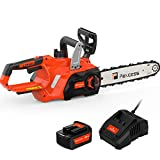 PAXCESS 12-inch Cordless Chainsaw with 1Pcs 20V 4Ah Lithium Battery&Quick Charger,Cordless Chainsaw with Tool-Less Chain Tension&Auto Lubrication System for Tree Branch Wood Cutting
