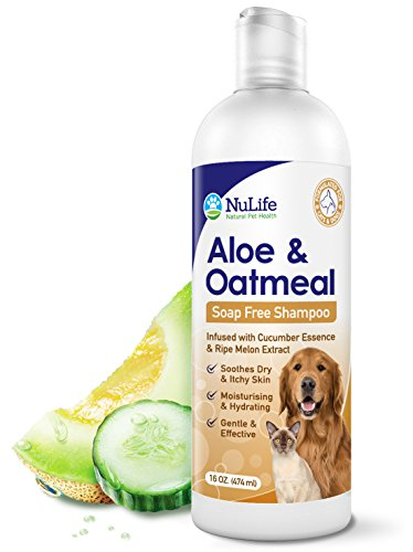 Oatmeal Shampoo For Dogs With Soothing Aloe Vera,...