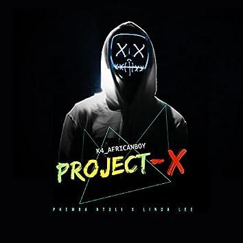 Project - X (feat. Phemba Ntuli & Linda Lee)