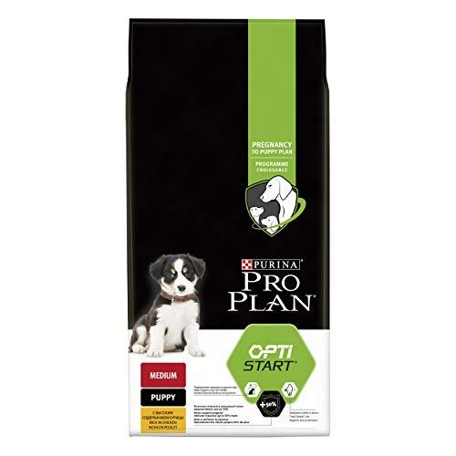 Purina ProPlan Medium Puppy Start pienso para perro cachorro Pollo 12 Kg