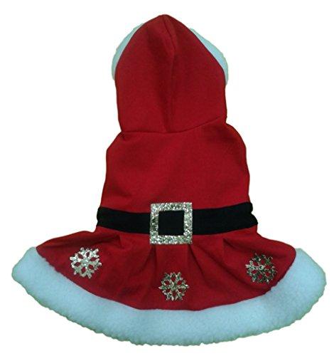 Honden & Co Kerst Hond Fancy jurk kostuum, Miss Santa, 14-inch/35 cm