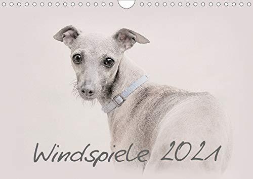 Windspiele 2021 (Wandkalender 2021 DIN A4 quer)